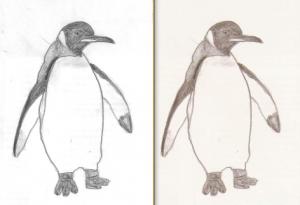 Comparaison entre XSane (à gauche) et Gnome Scan (à droite)